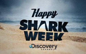 discovery channel uses social media